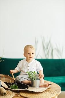 Ein porträt eines niedlichen kleinen jungen, der auf einem tisch sitzt und pflanzen verpflanzt