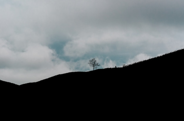 Ein schattenbild des einzelnen baums auf die oberseite des berges mit wolken und blauem himmel.