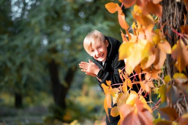 Ein schlauer junge schaut hinter einem baum mit gelben herbstblättern hervor und reibt sich die handflächen.