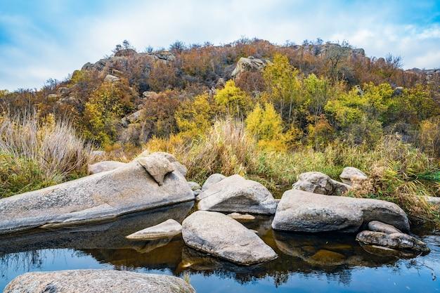 Ein schneller, flacher, sauberer bach fließt zwischen glatten, nassen großen steinen, umgeben von hohen trockenen klumpen, die sich in der malerischen ukraine im wind wiegen