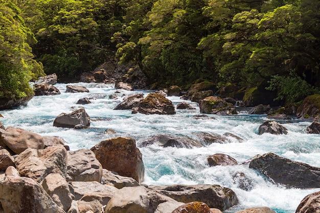 Ein schneller fluss in der nähe von pops view lookout fiordland national park südinsel neuseeland new