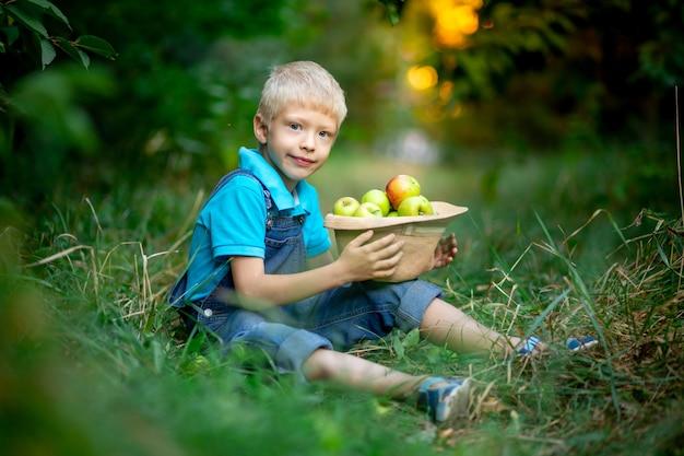 Ein sechsjähriger junge sitzt im gras in einem apfelgarten und hält einen hut mit äpfeln in den händen