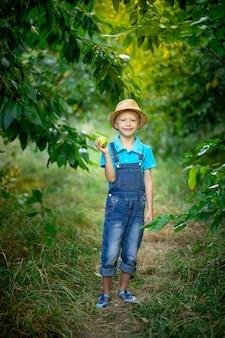 Ein sechsjähriger junge steht in einem blauen kleid und hut in einem garten mit apfelbäumen und hält einen apfel in der hand