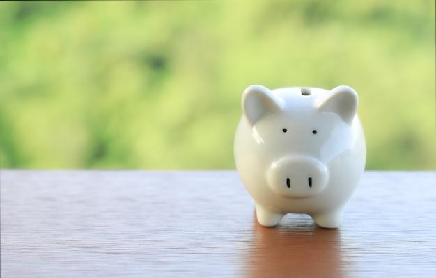 Ein sparschwein-spar- und investitionsthema auf einem glänzenden grünen waldhintergrund, kopienraum.