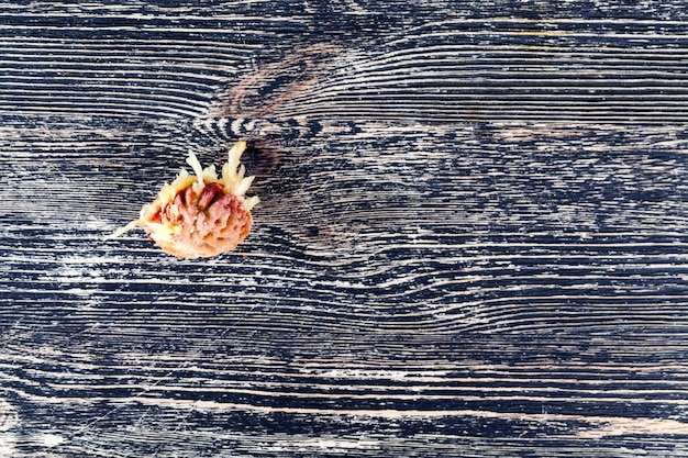 Ein stein aus dem gegessenen pfirsich liegt auf einem schwarzen holztisch, nahaufnahme