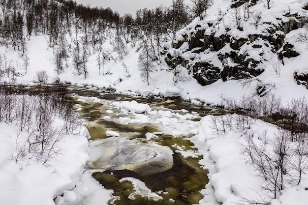 Ein strömender winterfluss in den bergen von setesdal, norwegen. der fluss ist von bäumen, schnee und eis umgeben