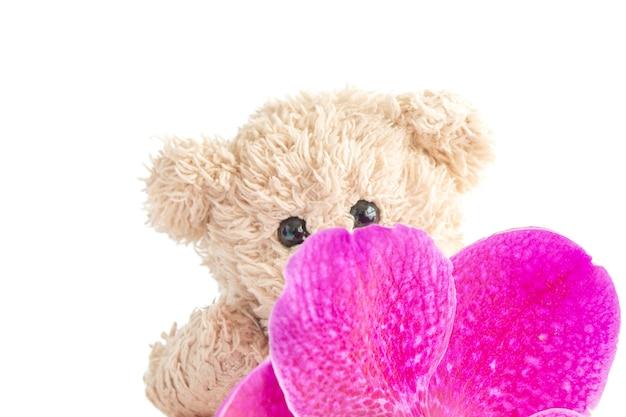 Ein süßes teddybärspielzeug sitzt mit frischen orchideen in einer glasvase.