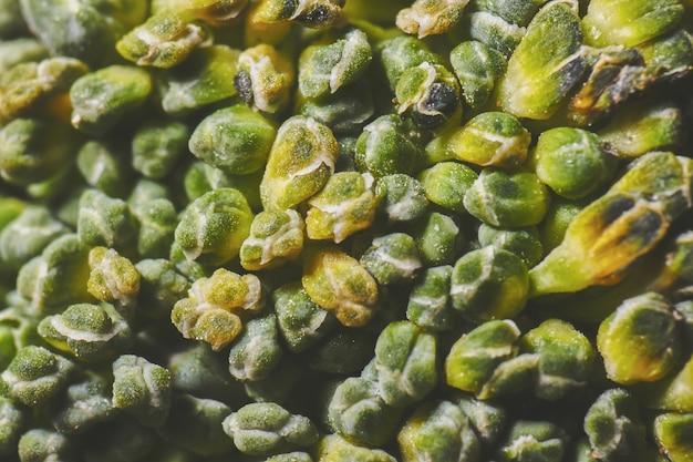 Ein supermakro-brokkoli