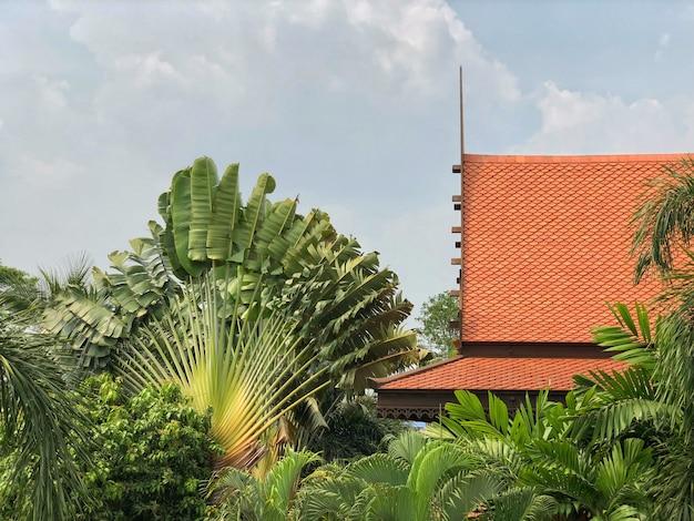 Ein teil des dachs des thailändischen angeredeten hauses in der orange farbe in der umfassung der tropischen anlage
