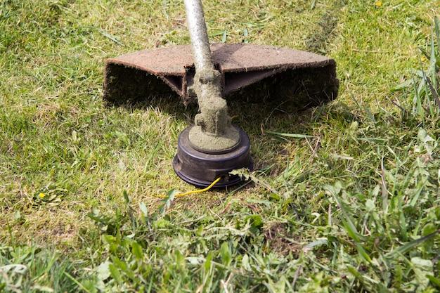 Ein trimmer oder ein benzinspieß, der gerade über das gras gemäht wurde sie können eine spezielle gelbe linie sehen