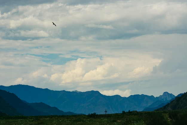 Ein vogel, der im himmel gegen einen hintergrund der turbulenzwolken ansteigt.