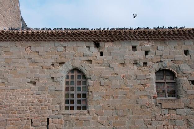 Ein vogelschwarm auf einem dach