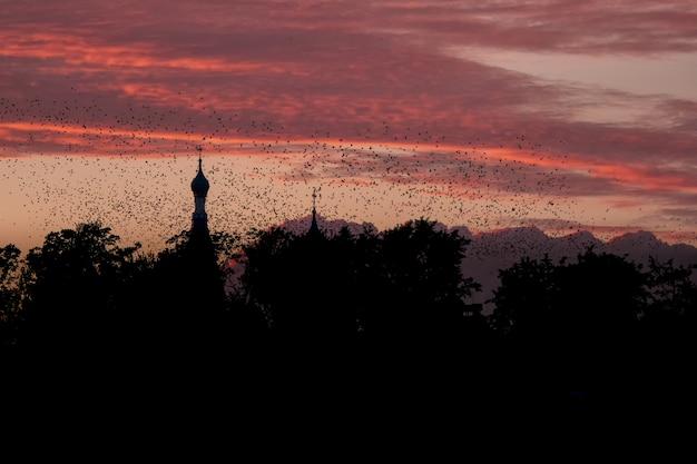 Ein vogelschwarm vor dem hintergrund einer kirche und eines roten sonnenuntergangs. ein mystisches konzept