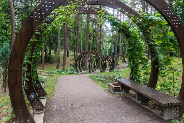Ein waldpark mit großen bäumen und kreativen bänken und bögen.