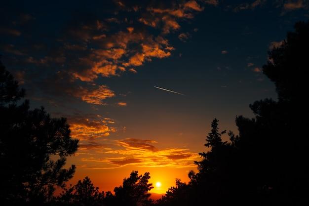 Ein wunderschöner orangefarbener sonnenuntergang am blauen himmel unter den seltenen wolken ein blick aus dem wald zwischen den