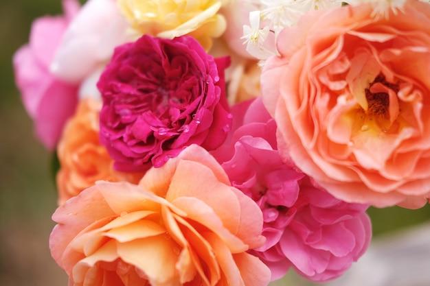 Ein wunderschöner strauß englischer rosen von david austin. vintage helle gartenblumen für einen urlaub
