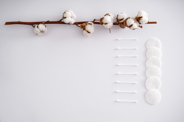Ein zweig aus baumwolle, wattepads und wattestäbchen an einer weißen wand. flach legen, platz für text. spa-behandlung.