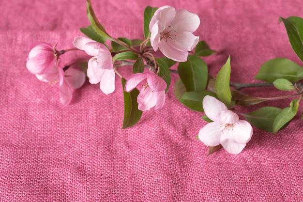 Ein zweig eines blühenden apfelbaums auf einem leuchtend rosa tuch Premium Fotos