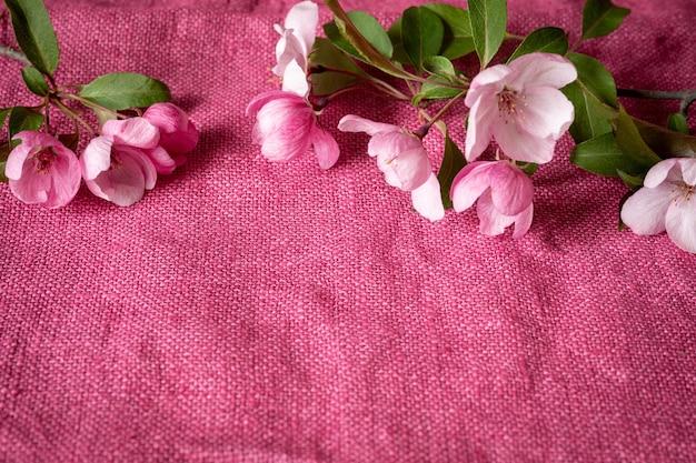 Ein zweig eines blühenden apfelbaums auf einem leuchtend rosa tuch