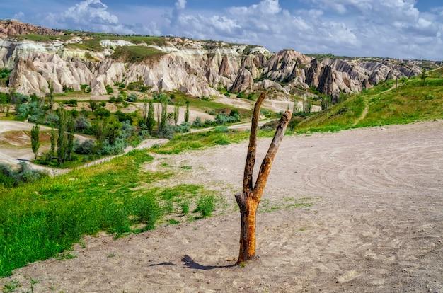 Eindrucksvolle pilzartige formen des sandsteins und der hügel in der schlucht bei cappadocia, nevsehir-provinz, region anatolien von der türkei, asien. schönheit des naturkonzepthintergrundes.