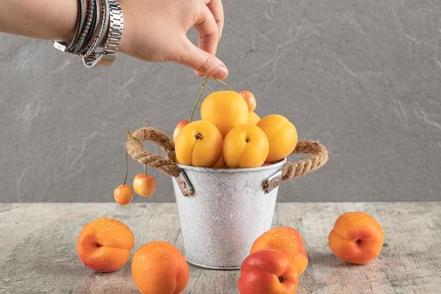 Eine aprikose aus metallfliesen nehmen