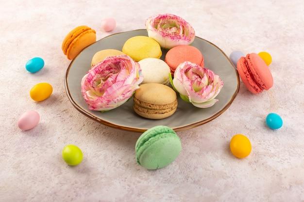 Eine bunte französische macarons der draufsicht innerhalb der platte mit rosen auf dem rosa schreibtischzuckerkuchenkeks süß