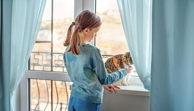 Eine bunte katze auf der fensterbank leckt die hand eines kindes.
