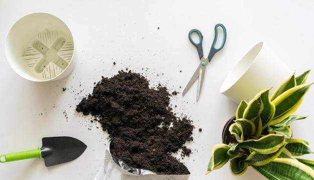 Eine draufsicht auf das bodenschmutzpaket, um nach hause blumen auf dem tisch zu pflanzen