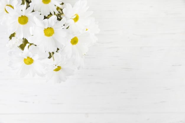 Eine draufsicht des gänseblümchenblumenstraußes über dem hölzernen hintergrund
