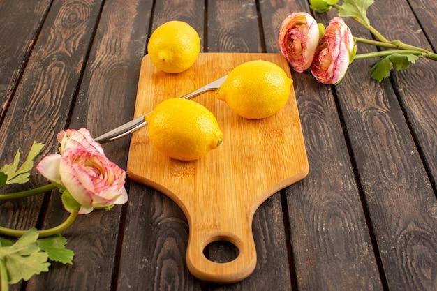 Eine draufsicht frische zitronen saure reife milde zitrusfrucht saftig zusammen mit getrockneten blumen tropisches vitamingelb auf dem braunen rustikalen schreibtisch