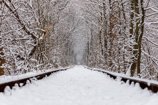 Eine eisenbahn im winterwaldtunnel der liebe. romantischer ort