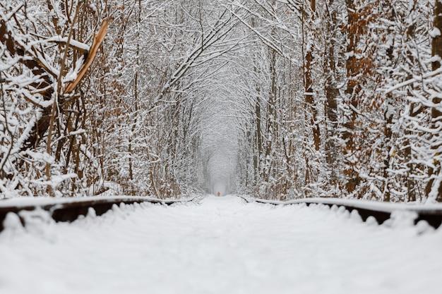 Eine eisenbahn im winterwaldtunnel der liebe