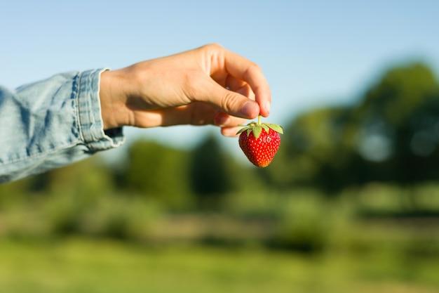 Eine erdbeere in einer hand