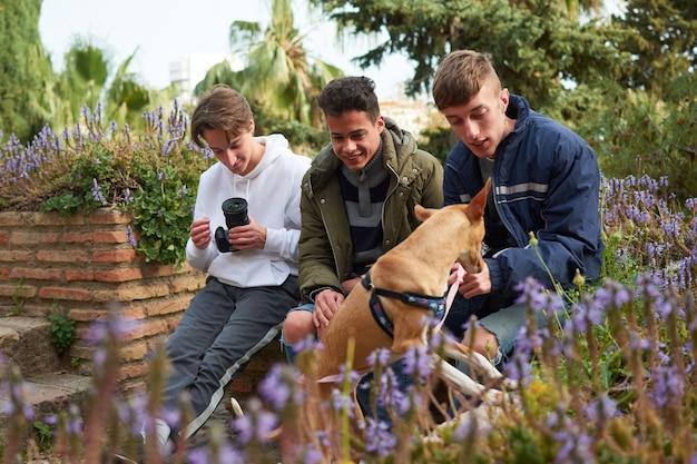 Eine flache fokusaufnahme von drei jungen männern, die in einem garten sitzen und nach einem pharao hound suchen?