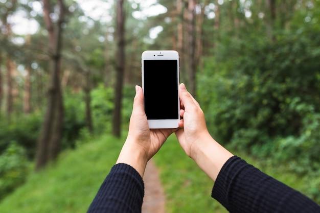 Eine frau, die fotos durch mobiltelefon im wald macht