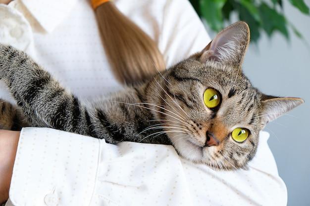 Eine frau hält eine traurige nachdenkliche katze auf der fensterbank.