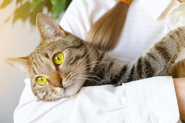 Eine frau hält eine traurige nachdenkliche katze