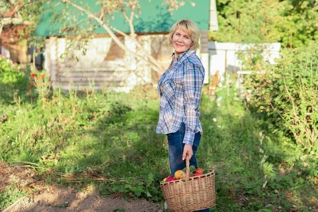 Eine frau hält einen gemüsekorb im garten. eine frau mittleren alters im hinterhof erntet leckere und gesunde früchte.