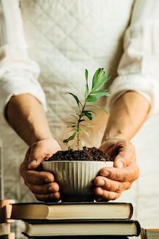 Eine frau in weiß hält eine wachsende pflanze in einem topf, frieden und persönliche wachstumskonzepte, kopieren raum