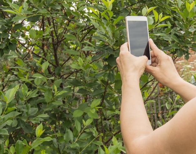 Eine frau macht ein foto mit einem handy und fotografiert pflanzen und bäume in einem garten im freien