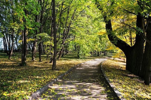 Eine fußgängerstraße in einem park unter grünen bäumen