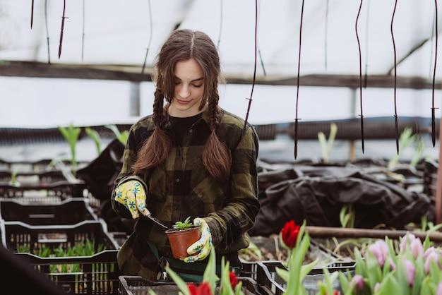 Eine gärtnerin in gummihandschuhen pflanzt blumensämlinge in einen topf mit werkzeug.