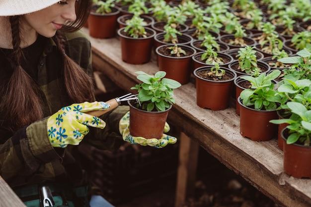 Eine gärtnerin in gummihandschuhen pflanzt blumensämlinge mit einem gartengerät in einen topf.
