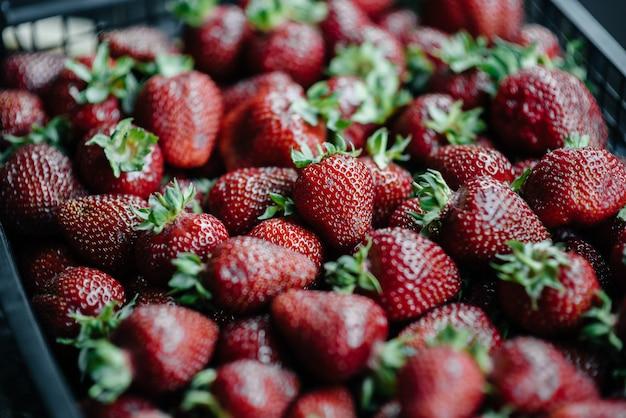 Eine große schachtel mit reifen und schönen erdbeeren. beeren.