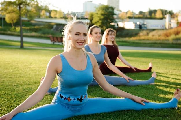 Eine gruppe erwachsener frauen, die draußen an yoga im park teilnehmen