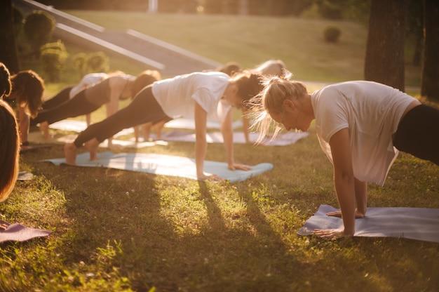 Eine gruppe junger sportlicher frauen macht am sonnigen sommermorgen unter anleitung des trainers plankenübungen im stadtpark. sonnenstrahlen auf grünem gras