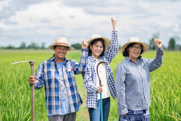 Eine gruppe von drei asiatischen bäuerinnen stand lächelnd da und hob die hände auf dem grünen reisfeld
