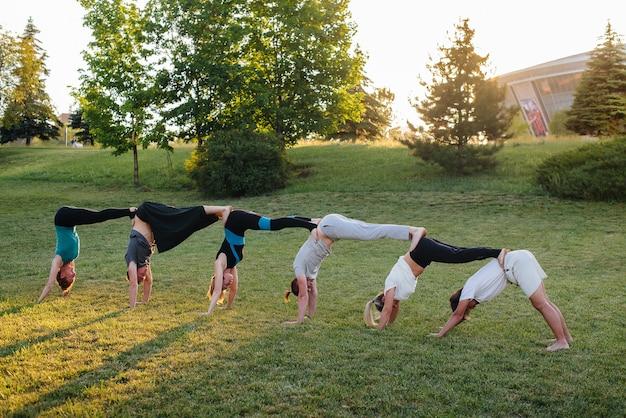 Eine gruppe von menschen, die yoga im park machen