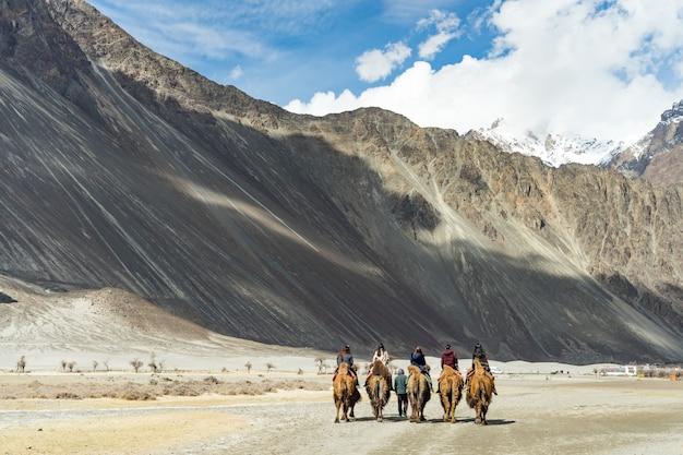 Eine gruppe von menschen genießen das reiten eines kamels, das auf eine sanddüne in hunder, kaschmir, indien geht.