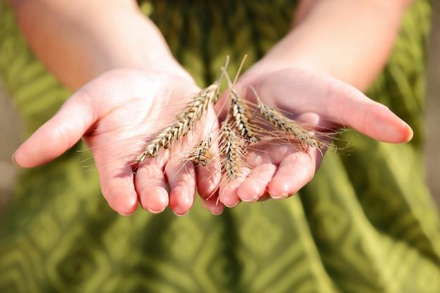Eine handvoll ernte auf grünem hintergrund